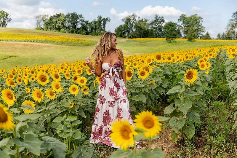 pleasant floral summer dresses