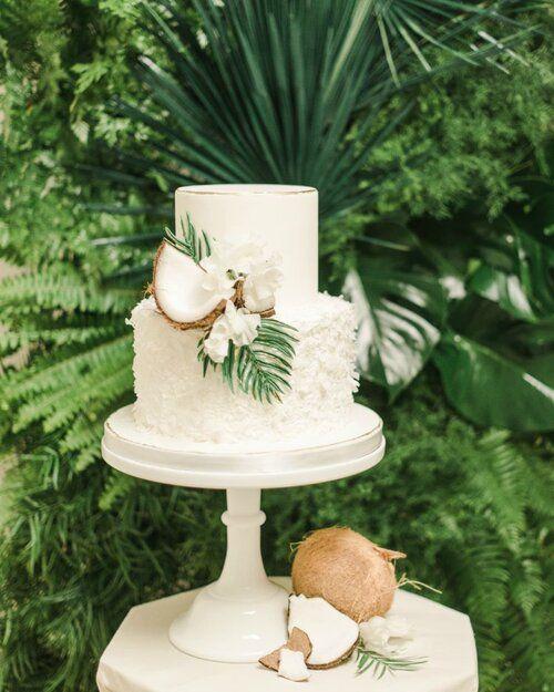 coconut cake the taste of tropical